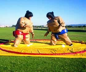 Sumo Wrestling - Adult or Junior