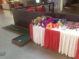 Carnival Game - Mini Golf