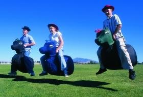 Hip-A-Dee Hop Horse Racing